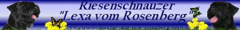 """RS """"Lexa vom Rosenberg"""""""